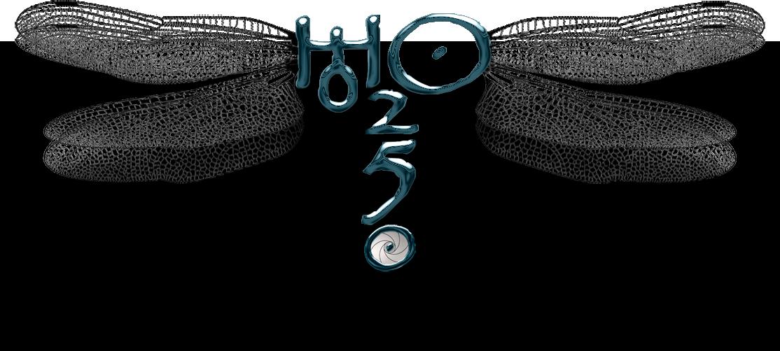 El logotipo de 5h2o formando una libelula