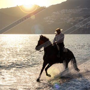 Foto de stock - Photo Stock - Jinete al galope sobre el agua con salpicaduras
