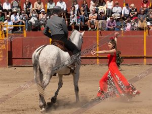 Foto de stock - Photo Stock - Bailaora con caballo