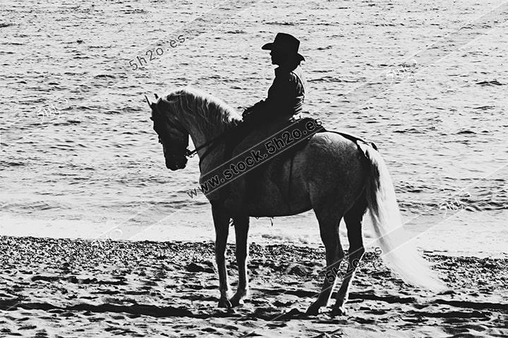 Foto de stock - Photo Stock - jinete en blanco y negro silueta sobre el mar
