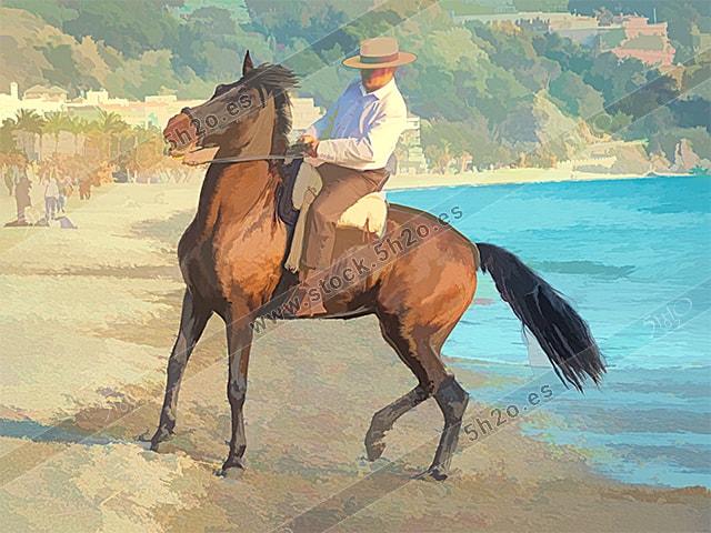 Foto de stock - Photo Stock - Edicion acuarela de un jinete andaluz en la playa