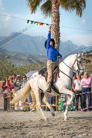 Foto de stock - Photo Stock by 5h2o - Horsewoman - Amazona - en la linea de cintas
