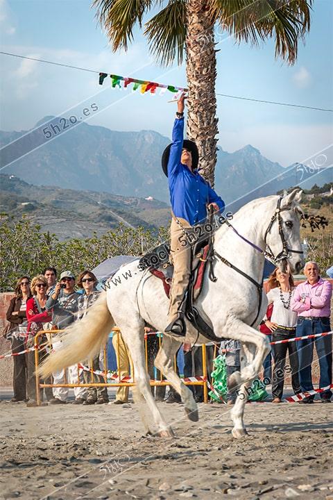 Foto de stock - Photo Stock by 5h2o - Horsewoman - Amazona - en la linea de cintas