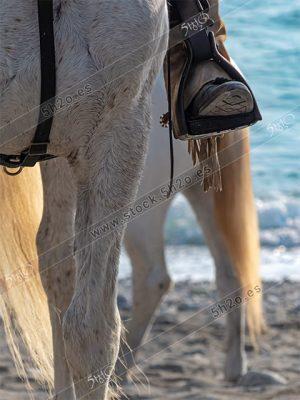 Foto de stock - Photo Stock by 5h2o - Equitación detalle de una bota de montar sobre un estribo en un caballo blanco