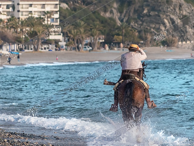 Foto de stock – Photo Stock by 5h2o – Jinete andaluz al galope por la orilla del mar con salpicaduras